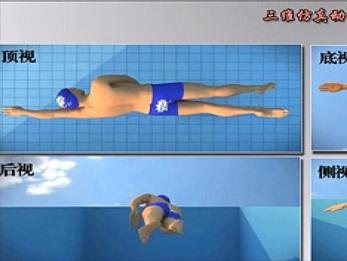 keep on swimming专业自学游泳自由泳教程