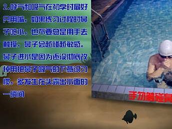 零起点自学游泳视频教程-蛙泳自由泳24集优惠装