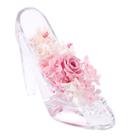 公主的水晶鞋