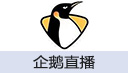 企鹅体育鹅肝充值