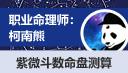 职业命理师柯南熊-紫薇斗数命盘测算(按小时计费)