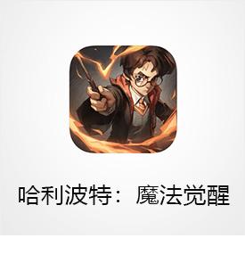哈利波特:魔法觉醒充值(中国区)